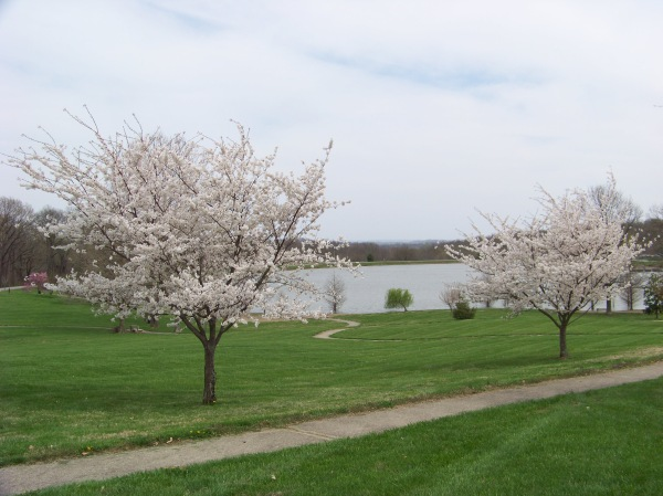 Cape Girardeau makes for a great spring getaway.